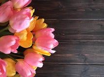 Tulipas cor-de-rosa e amarelas Fotografia de Stock Royalty Free