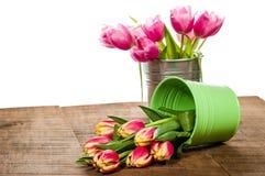 Tulipas cor-de-rosa em um recipiente do ramalhete Imagens de Stock