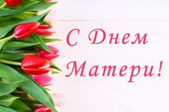 Tulipas cor-de-rosa em uma tabela de madeira branca com uma inscrição no russo - dia feliz do ` s da mãe Imagem de Stock Royalty Free