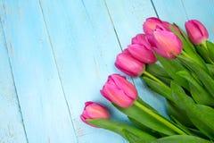 Tulipas cor-de-rosa no fundo azul de madeira Feriado da concepção, o 8 de março, dia do ` s da mãe Espaço liso da configuração e  Fotos de Stock Royalty Free