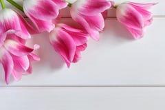 Tulipas cor-de-rosa no pranchas de madeira brancas Fotos de Stock Royalty Free