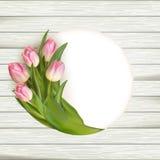 Tulipas cor-de-rosa sobre a madeira branca Eps 10 Imagens de Stock Royalty Free