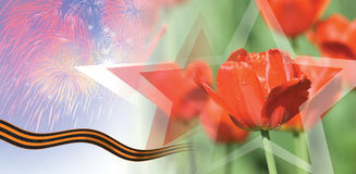 Tulipas de Victory Day Card With Red Fotografia de Stock Royalty Free