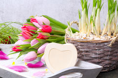 Tulipas e coração para a inscrição Imagem de Stock Royalty Free