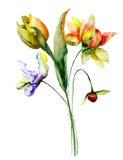 Tulipas e flores do gerber Fotografia de Stock Royalty Free