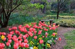 Tulipas e jardins Geórgia de Gibbs do banco Imagem de Stock Royalty Free
