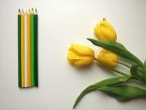 Tulipas e lápis amarelos Imagens de Stock Royalty Free