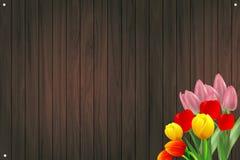 Tulipas e madeira Fotografia de Stock