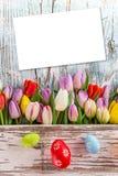 Tulipas e ovos da páscoa no fundo de madeira Fotos de Stock
