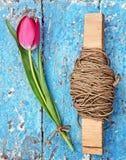 Tulipas e skein vermelhos frescos da corda Foto de Stock