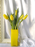 Tulipas em um vaso Imagem de Stock Royalty Free