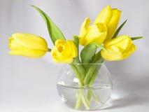 Tulipas em um vaso Imagem de Stock