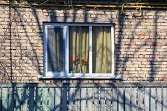 Tulipas em um vaso em uma janela com uma parede de tijolo Imagem de Stock Royalty Free