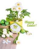 Tulipas, gerberas brancos e ovos da páscoa isolados no branco Imagem de Stock