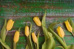 Tulipas na opinião superior do fundo de madeira verde velho Imagens de Stock
