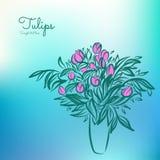Tulipas no vaso Desenho de esboço no fundo colorido Foto de Stock