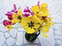 Tulipas orangey-amarelas decorativas Fotos de Stock