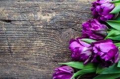 Tulipas roxas no fundo de madeira Foto de Stock