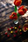 Tulipas vermelhas de florescência em um fundo de madeira com doces Fotografia de Stock Royalty Free
