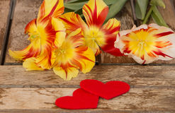 Tulipas vermelhas e amarelas com corações no fundo de madeira Imagens de Stock Royalty Free