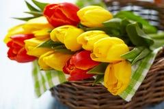 Tulipas vermelhas e amarelas em uma cesta Fotos de Stock Royalty Free