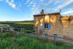 Tulipas vermelhas e casa velha Imagem de Stock Royalty Free
