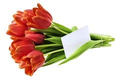 tulipas vermelhas e um cartão vazio Imagens de Stock
