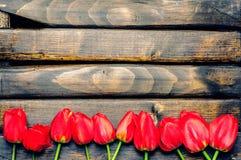 Tulipas vermelhas em placas escuras Imagem de Stock Royalty Free