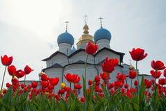 Tulipas vermelhas na frente da catedral Imagem de Stock