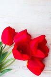 Tulipas vermelhas no fundo de madeira Fotos de Stock Royalty Free