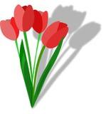 Tulipe Photographie stock