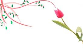 Tulipe avec l'ornement Image libre de droits