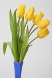 Tulipe de bouquet Photographie stock libre de droits
