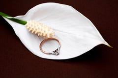 Tulipe et boucle de mariage Image libre de droits