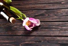 Tulipe et vin sur le bois Photographie stock