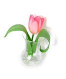 Tulipe rose dans un vase Photo libre de droits