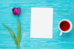 Tulipe simple avec la feuille de papier vide Image libre de droits