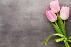 Tulipe sur le fond gris Image libre de droits