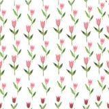 Tulipe tirée par la main de fleur d'aquarelle rose sans couture Photographie stock libre de droits