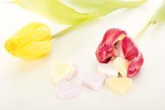 Tulipes avec des coeurs Photo libre de droits