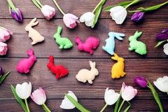 Tulipes avec des lapins de Pâques Photographie stock