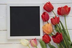 Tulipes avec le cadre de tableau noir vide de tableau sur le fond en bois blanc Photo romantique Photo libre de droits