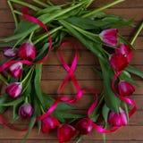 Tulipes, bande dans la forme du numéro 8, texture en bois Photo libre de droits