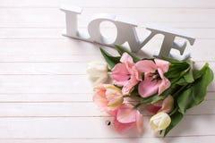 Tulipes blanches et roses de ressort frais et amour de mot sur p blanc Photo libre de droits
