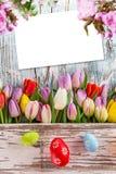 Tulipes colorées avec des oeufs de pâques sur la table en bois Photographie stock libre de droits