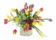 Tulipes colorées dans le vase Photographie stock libre de droits