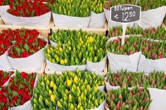 Tulipes colorées en vente Images libres de droits