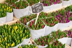 Tulipes colorées en vente Photo stock