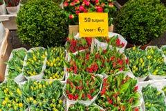 Tulipes colorées en vente Photographie stock