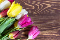 Tulipes colorées sur le fond en bois Jour de mères heureux Le printemps… a monté des feuilles, fond naturel Photographie stock libre de droits